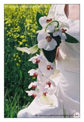 lr-wwwrodolphededeckerbe-event-mariage-11